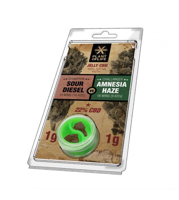Plant Of Life - Sour Diesel vs Amnesia Haze - Jelly CBD 2g