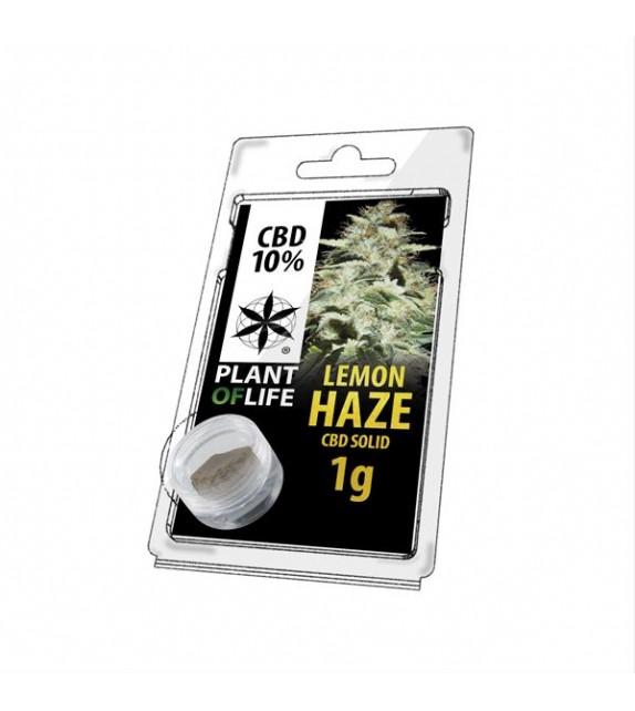Plant of Life - Lemon Haze