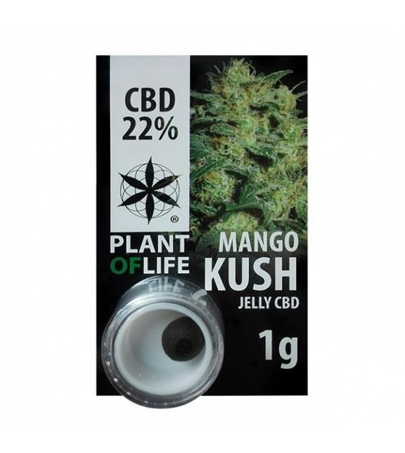 Plant of Life - Mango Kush - Jelly CBD