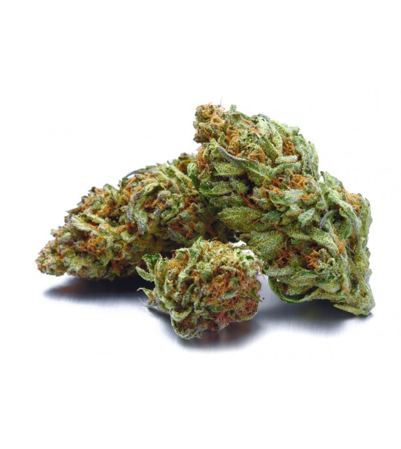 OnlyWeed