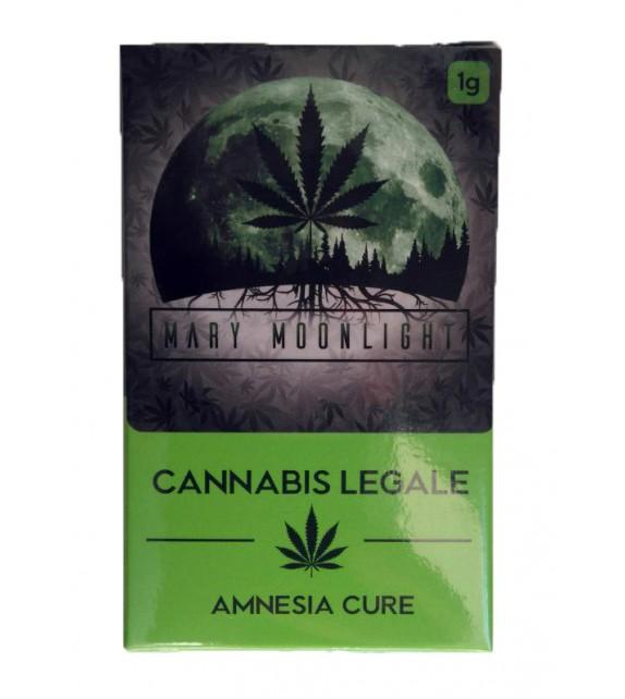 Mary Moonlight - Amnesia Cure