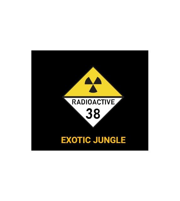 RadioActive - Exotic Jungle