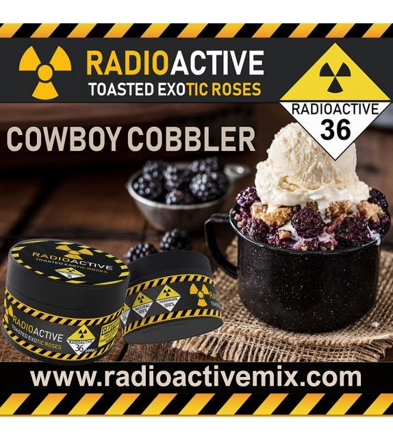 RadioActive - Apricot Custard Tart 200g