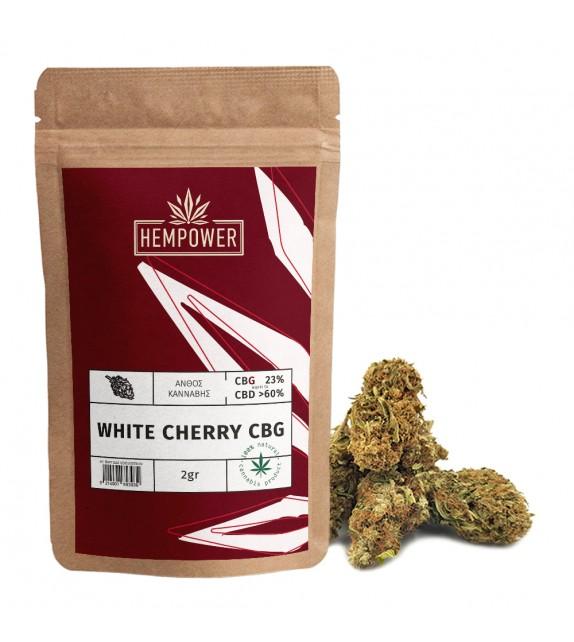 Hempower White Cherry CBG 23% 2gr