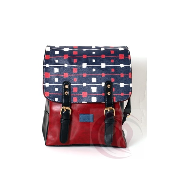 Picons - BackPack 004