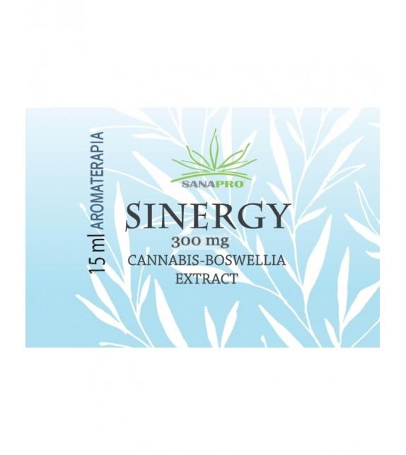 Sanapro - Synergy