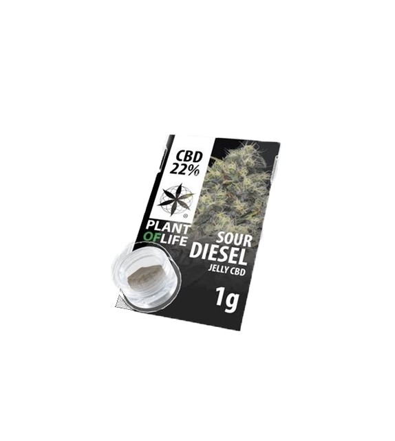 Plant Of Life - Sour Diesel -  Jelly CBD