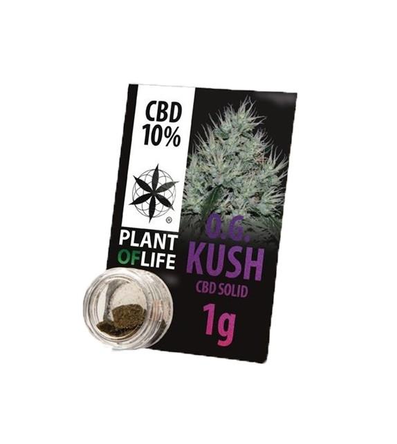 Plant Of Life - OG Kush