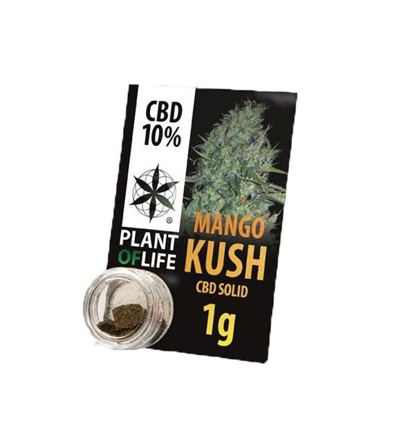 Plant Of Life - Mango Kush