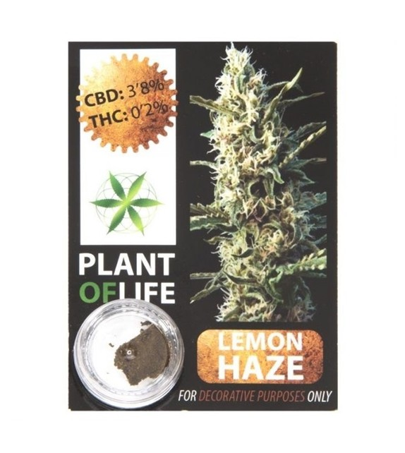 Plant Of Life - Lemon Haze 3,8%
